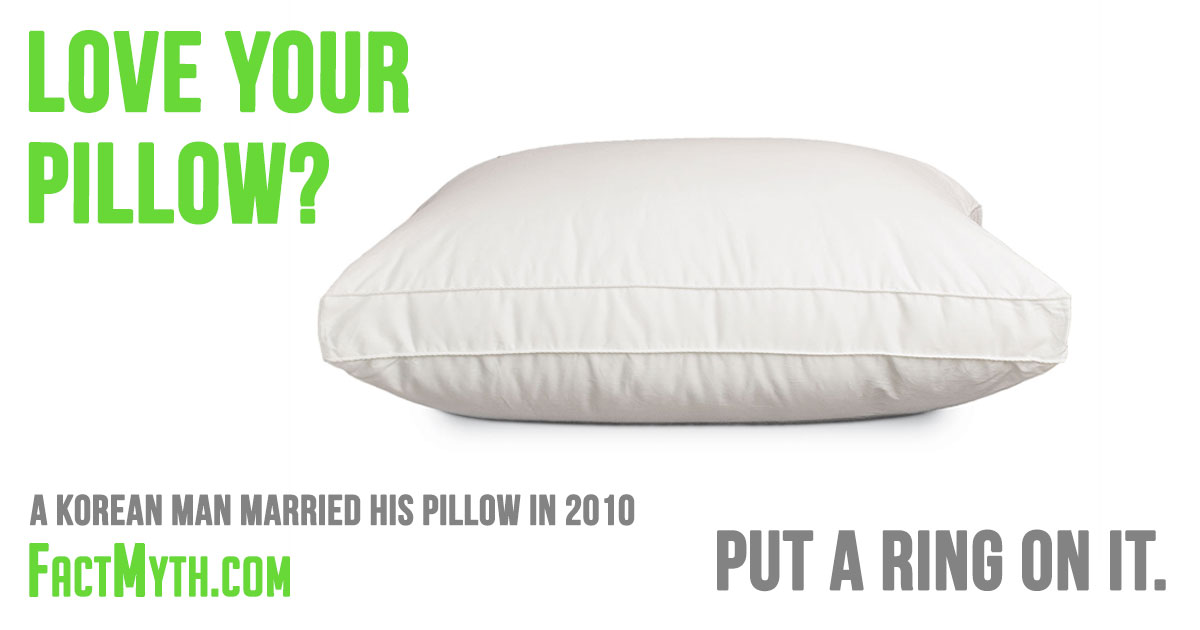 Did a Korean Man Marry His Pillow?
