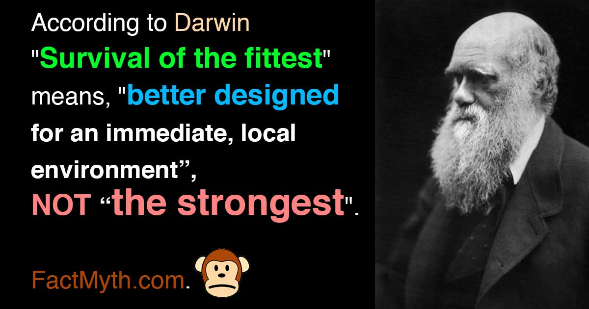 Darwin survival of the fittest