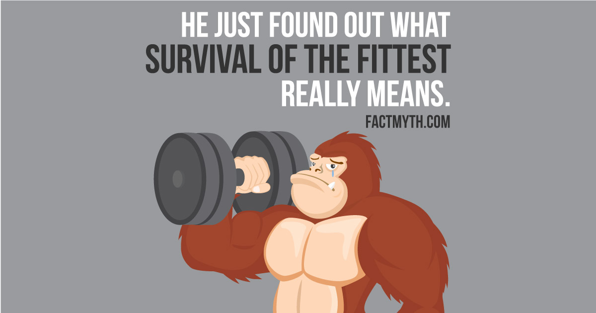 Survival Of The Fittest Only The Strong Survive Fact Or Myth