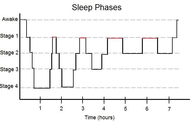 Simplified Sleep Phases
