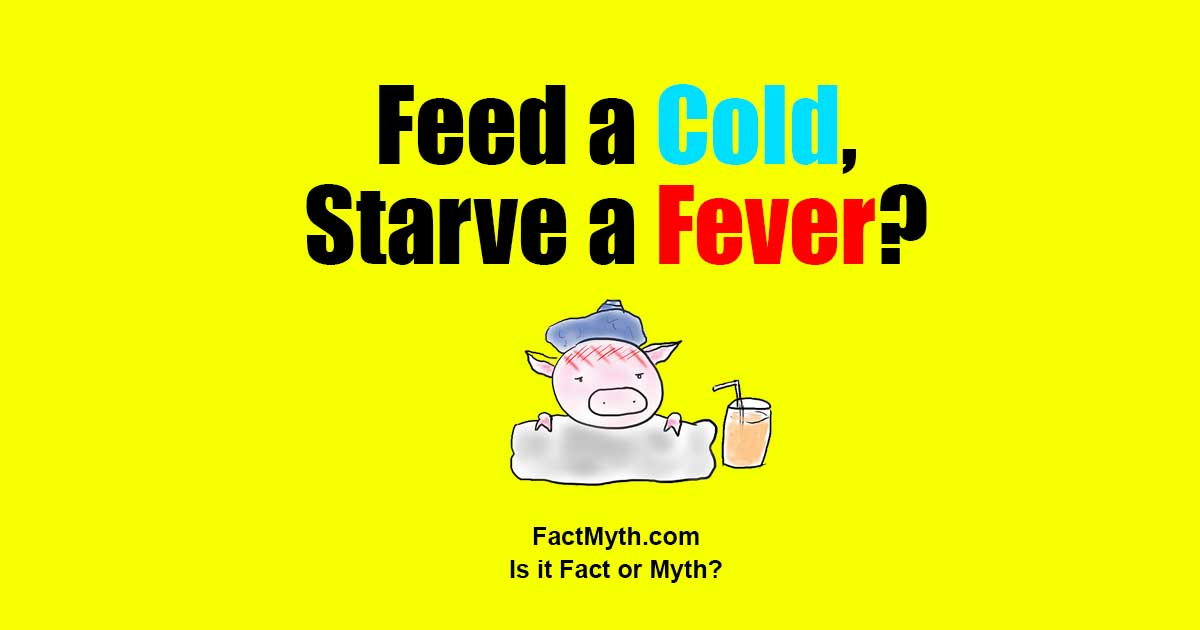 Feed a cold, starve a fever. Fact or Myth?