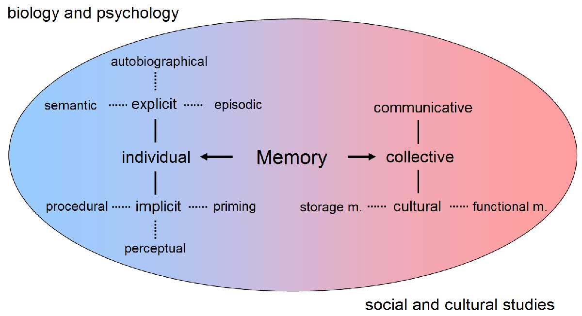 an overview of the different types of long term memory Memory revision notes  types of long term memory ao1  it is easier to do two tasks at the same time if they use different processing systems.