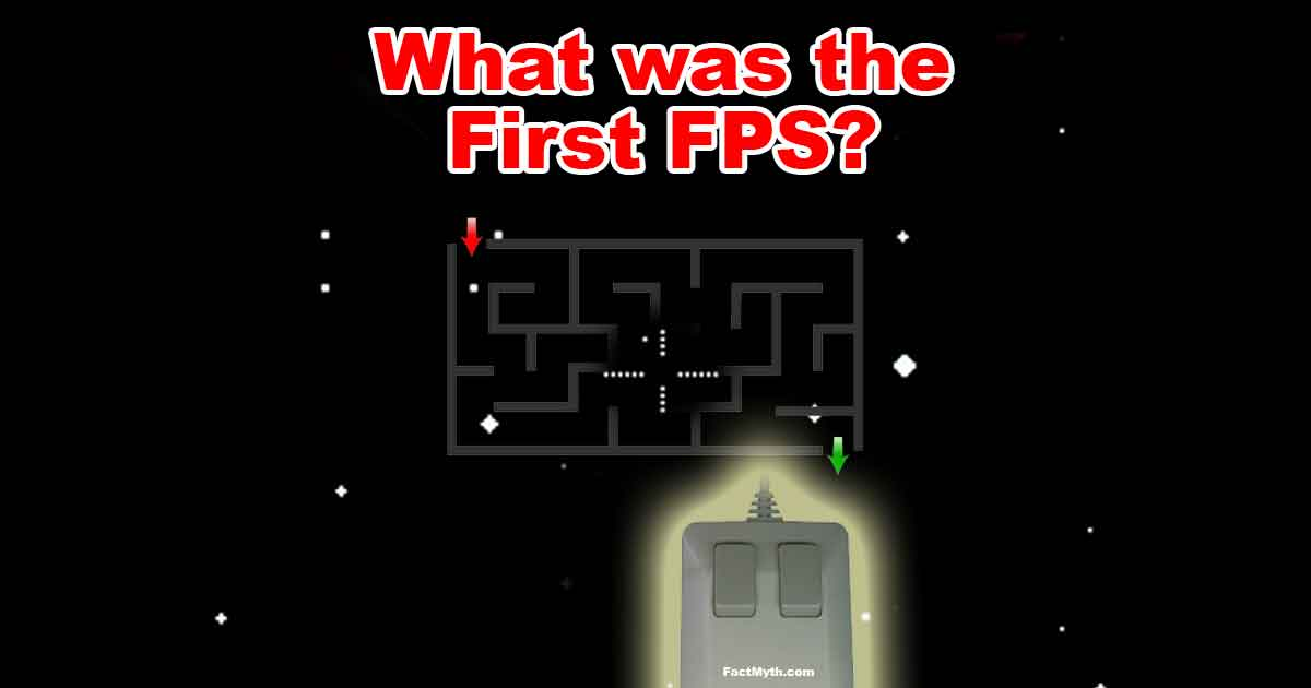 What was the first first person shooter?