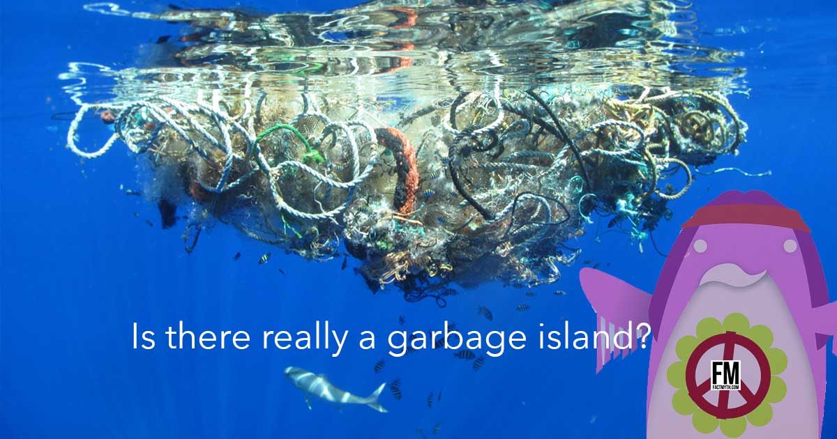 The Great Pacific Garbage Patch Is An Area Of Trash In Ocean That S Twice