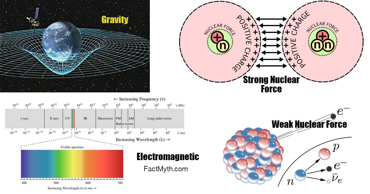 The Four Fundamental Forces of Particles