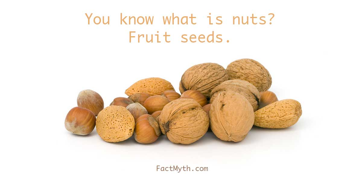 What are nuts?
