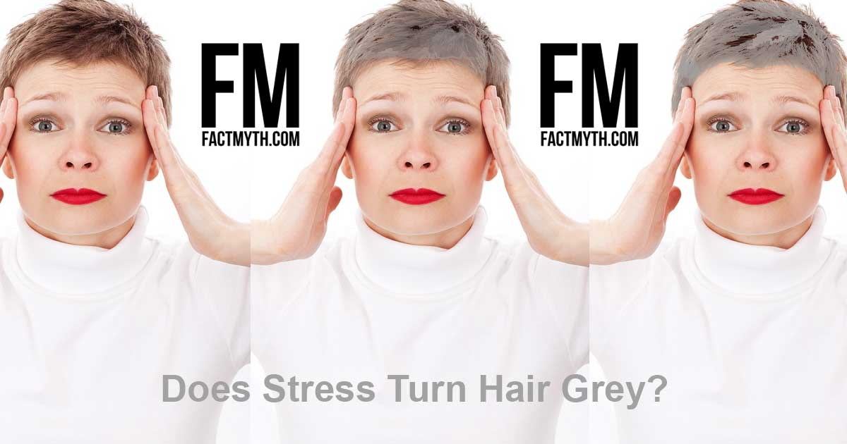 Does Stress Turn Hair Grey?