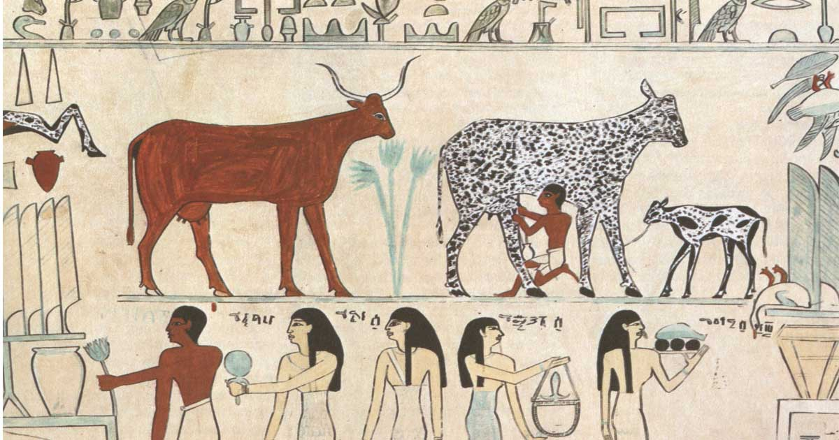 Early social system in egypt